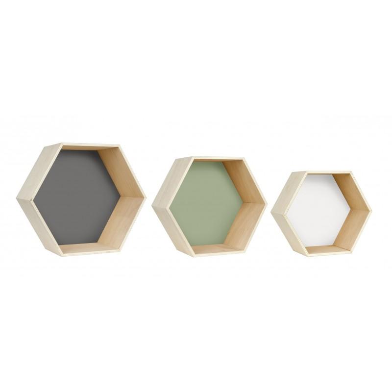 Set Hexagonos Multicolor