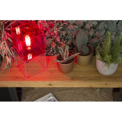 Box2 Lamp Red