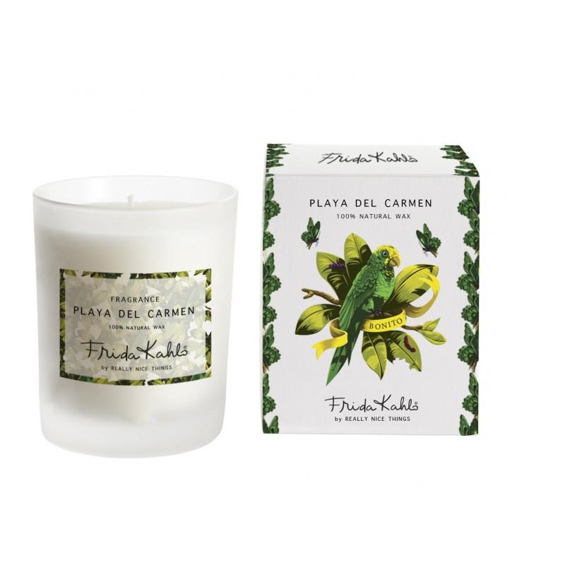 "Candle "" El Jardín De Frida"""