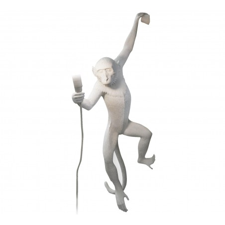 Monkey Lamp Holding
