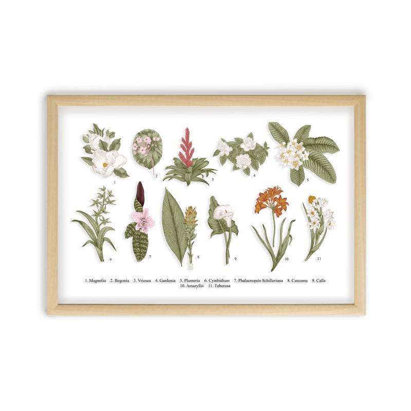 Botanical Flowers Natural Frame