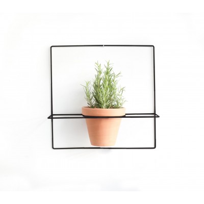 Wire Wall Plants Square