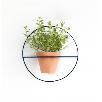 Wire Wall Plants Circle Colors