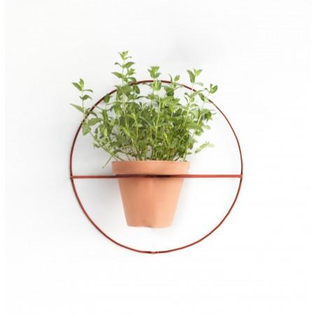 Wire Wall Plants Círculo Colores