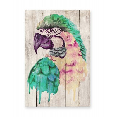 Tabla Watercolor Parrot