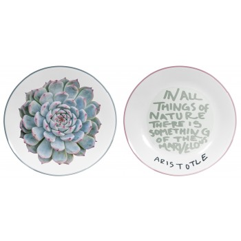 Set 2 decorated dishes Suculents