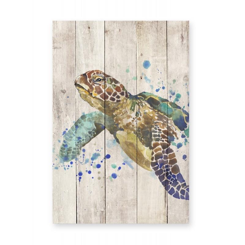 Tabla Turtle