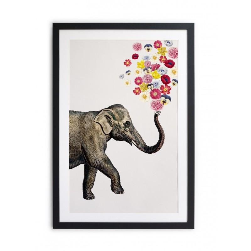 Cuadro moldura negra 60x40 Elephant Flowers
